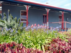 Some of the gorgeous gardens in downtown Albany, Western Australia - Cycling Across Australia