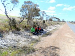 Resting in the shade, Western Australia - Cycling Across Australia