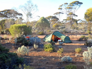 Bush camp between Balladonia and Caiguna - Cycling Across the Nullarbor