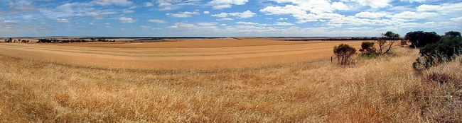 Fields as far as the eye can see - Cycling Across Australia