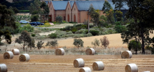 Barossa Featured Image