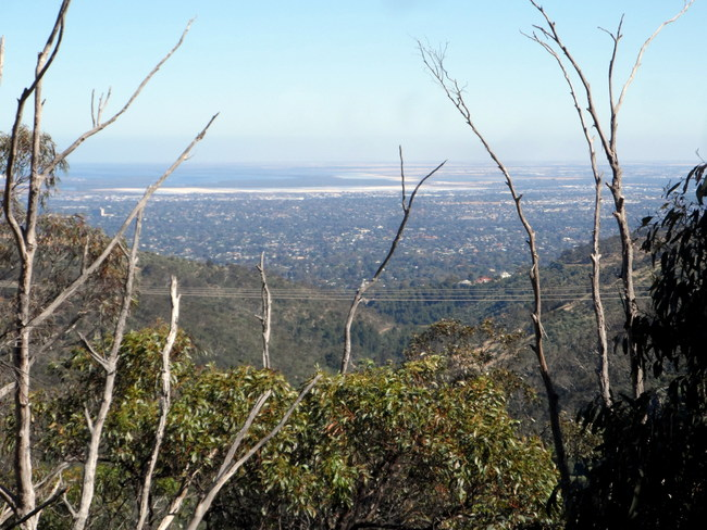View of Adelaide from Eagle on the Hill - Cycling Across Australia