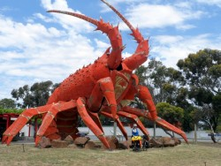 The Very Big Crayfish - Kingston, South Australia - Cycling Across Australia