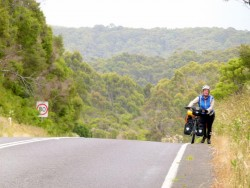 Walking Sakura - Lavers Hill - Great Ocean Road, Victoria - cycling Across Australia