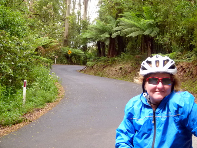 Beech-Forest Road - Great Ocean Road, Victoria - Cycling Across Australia