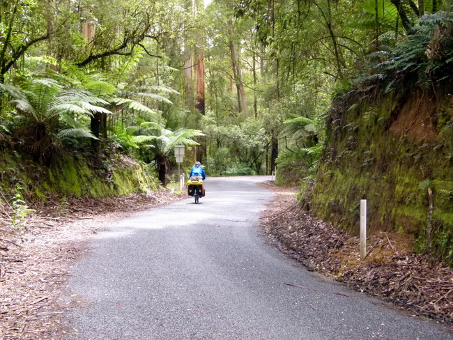 The Turton Track - Beech-Forest Road Victoria - Cycling Across Australia