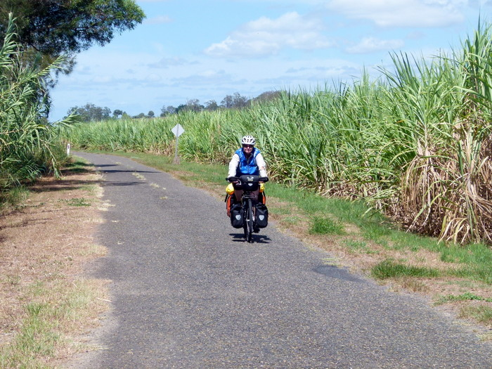 Riding through the canefields, Lawrence, NSW - Cycling Across Australia