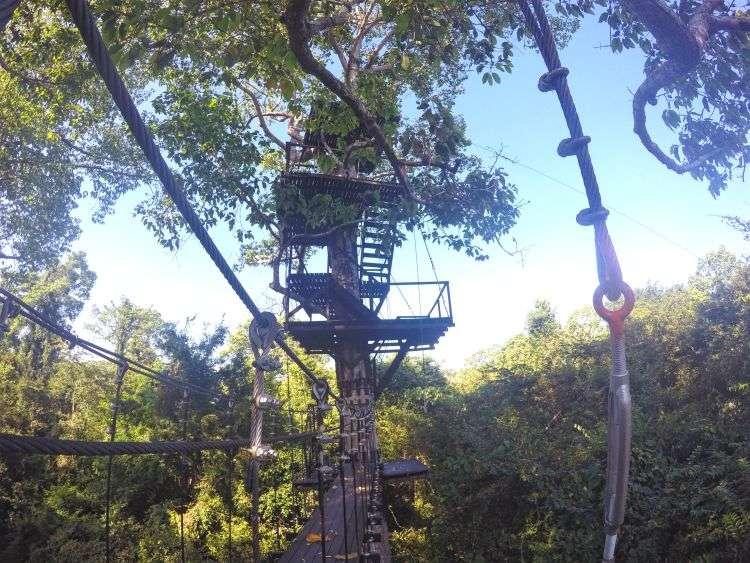 Platform - Angkor Ziplines Siem Reap Cambodia